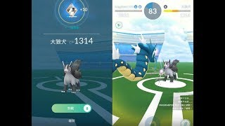 【Pokemon GO】第三代寶可夢土狼犬道館對戰!