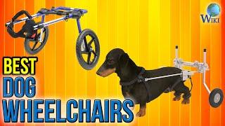 5 Best Dog Wheelchairs 2017