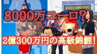 2億300万円の高級錦鯉で大ブーム!マグナム長尾さんは?高級錦鯉を知り尽くす!錦鯉屋さんだった?