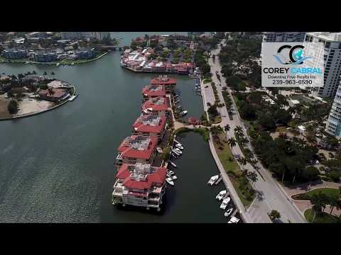 Park Shore Ardissone Real Estate Flyover in Naples, Florida