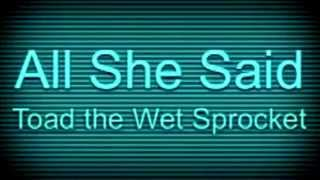 Toad the Wet Sprocket - All She Said