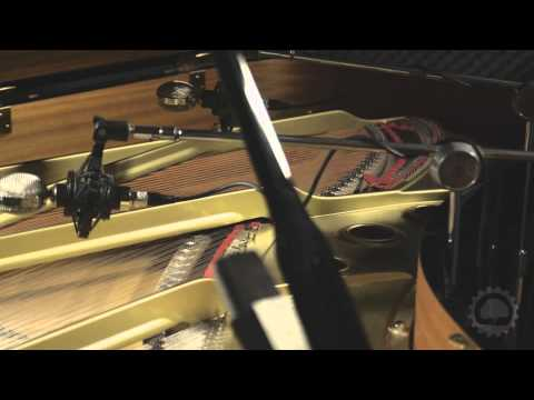 Video for Evolution Rosewood Grand - Product Demonstration