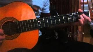 ya zina diri latay raina ray cover guitar by nazim