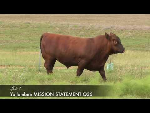 YALLAMBEE MISSION STATEMENT (AI) (MAF) (NHF) (OSF) YRAQ35