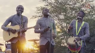 DS Zimbabwe: Introducing Fusion 5   Katarina