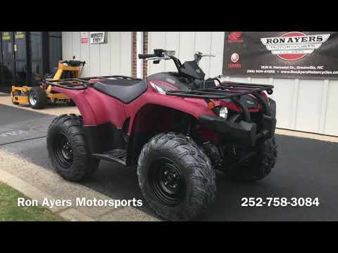 2020 Yamaha Kodiak 450 in Greenville, North Carolina - Video 1