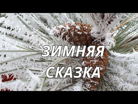 Снежный пейзаж. Зимняя сказка. Красивая музыка Сергея Чекалина.