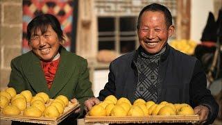 Китай на кончике языка 2-Истории основных блюд