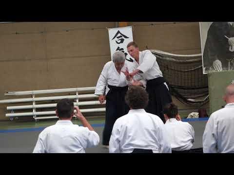 Aikido Stage Luc sur Mer 2018 Toshiro Suga