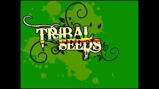 Tribal Seeds - Dark Angel