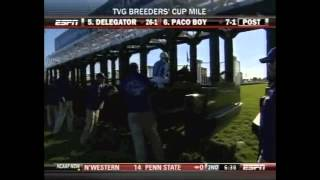 2010 BREEDERS' CUP MILE $2,000,000 WITH GOLDIKOVA AND THE USUAL Q. T.
