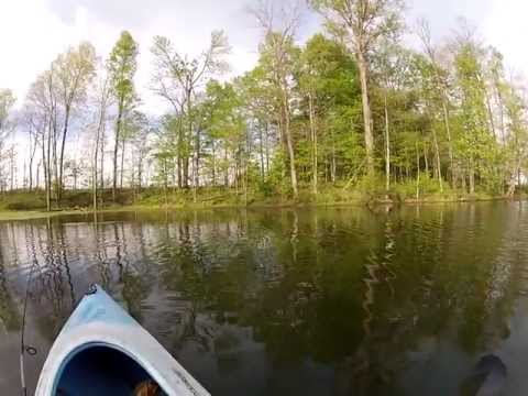 Pond Fishing from the Kayak