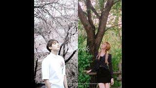 [Lyrics] JK x Lisa - ED SHEERAN - Perfect