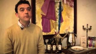 Vino Joven Montilla-Moriles