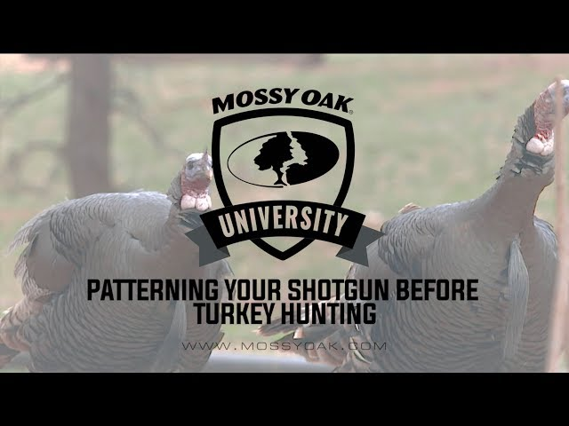 photo relating to Turkey Target Printable named How In direction of Behavior A Shotgun for Turkey Looking Mossy Oak