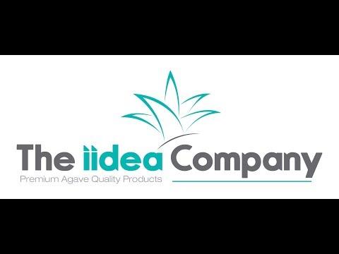THE IIDEA COMPANY