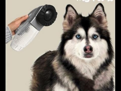 Aspirador de Pelo para Mascotas My Pet Vacuum