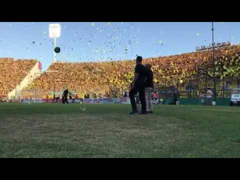 """""""""""Hoy te vinimos a ver"""" - Hinchada de Peñarol"""" Barra: Barra Amsterdam • Club: Peñarol"""