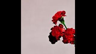 John Legend - Love In The Future (Intro)