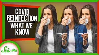 COVID-19 Reinfections Are a Thing: Here's What We Know So Far | SciShow News