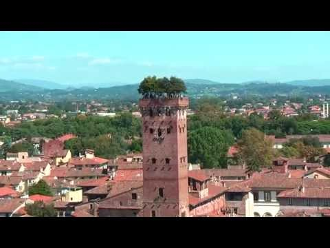 Beautiful view from Torre delle Ore Lucca on Lucca (La Torre dell' Orologio di Lucca)