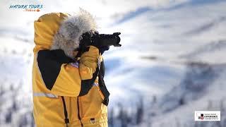 Arctic Circle Tour:  Nature Tours Yukon's  Canadian Signature Experience