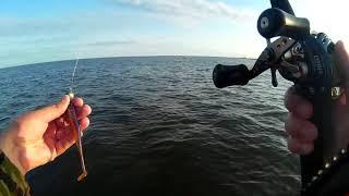 Рыбалка на дамбе финского залива сегодня