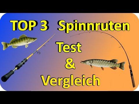 Spinnruten TEST & Vergleich | Top 3 Spinnruten Testbericht/Kaufempfehlung