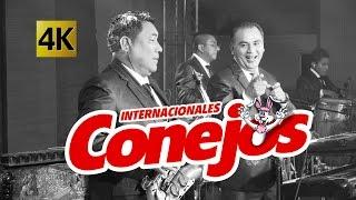 Internacionales Conejos - Concierto Fieston 132 Aniversario / Calidad 4K