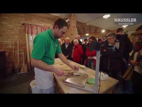 Электрическая каменная печь духовка Primus Häussler