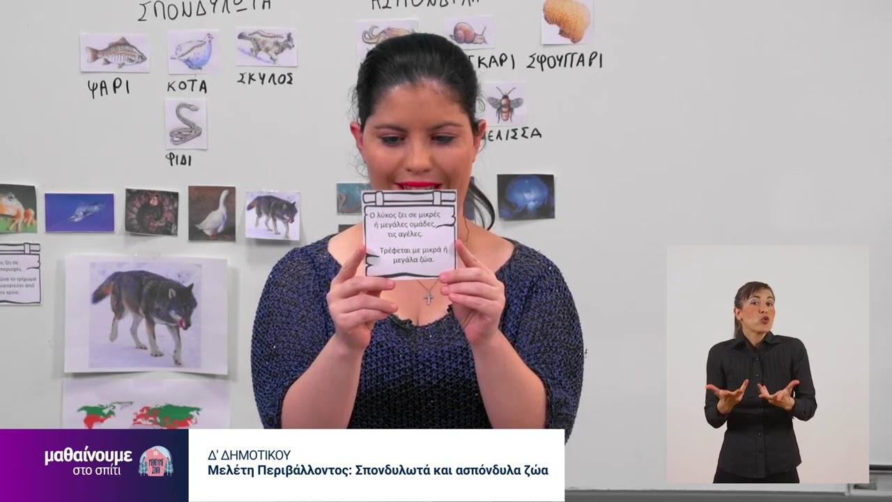 Μαθαίνουμε στο σπίτι | ΜΕΛΕΤΗ ΠΕΡΙΒΑΛΛΟΝΤΟΣ | Δ': Σπονδυλωτά και ασπόνδυλα ζώα | 13/06/2020 | ΕΡΤ