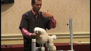 Balance on a Poodle - Sasha Riess (Grooming with European Flair, Groom Expo 2009)