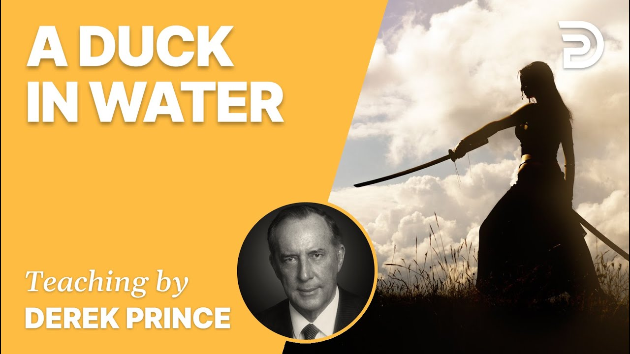YouTube thumbnail for A Duck In Water
