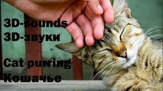 3D-звуки - Кошачье мурлыканье (слушать в наушниках)|3D-sounds - Cat purring (listen with headphones)