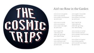 The Cosmic Trips - Ain't no Rose in The Garden