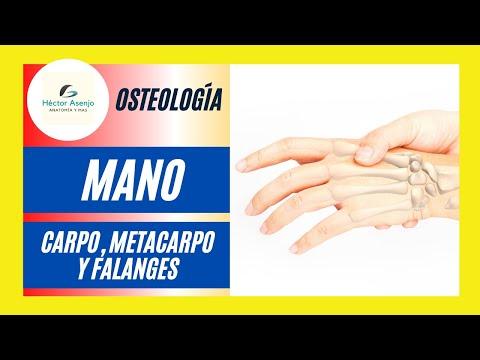 Cauza durerii în mușchii articulației șoldului