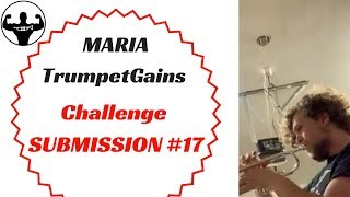 MARIA   TG Challenge Submission #17