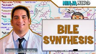 Gastrointestinal   Bile Synthesis