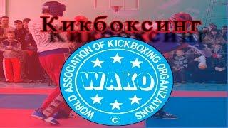 Кикбоксинг. Чемпионат Одесской области 2016