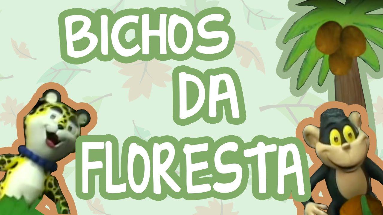 BICHOS DA FLORESTA | BEBÊ MAIS BICHOS