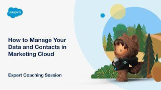 How to Manage Your Data and Contacts in Salesforce Marketing Cloud
