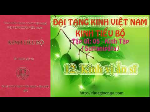 Kinh Tiểu Bộ - 069. Kinh Tập - Chương 1: Phẩm Rắn - 12. Kinh vị ẩn sĩ