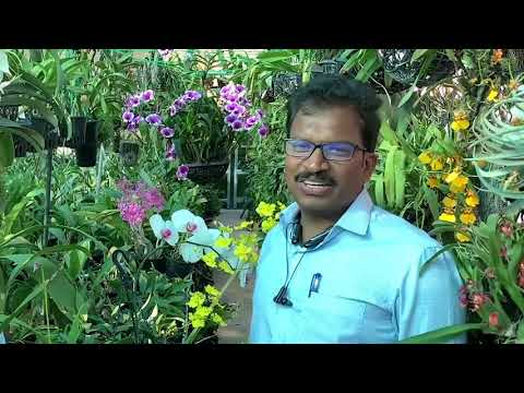 Tata Power's Mr. Nageshwar is a Game Changer for Nurturing his Passion for Plants