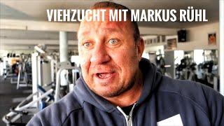 Viehzucht IX - Wir kaufen Fitnessgeräte von einem IFBB PRO Bodybuilder / Wir treffen Markus Rühl