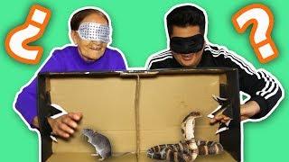 ¿QUÉ HAY EN LA CAJA? CON MI ABUELITA, LUISITO REY Y ANAVBON |WHAT'S IN THE BOX?