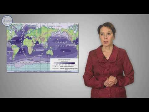 Воды Мирового океана и его свойства