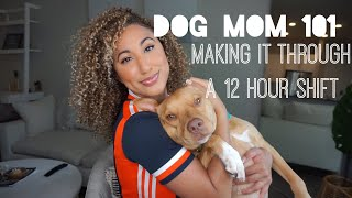 How To Manage Having A Dog With A Busy Schedule