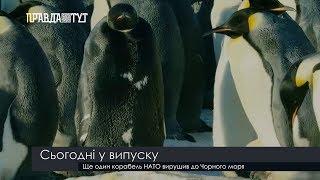 Випуск новин на ПравдаТут за 20.02.19 (13:30)