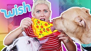 TESTING CHEAP DOG TOYS FROM WISH | Skyes Family | NICOLE SKYES