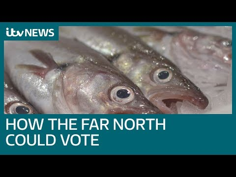 How the Far North could vote in the General Election | ITV News